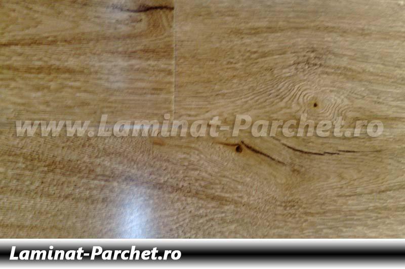 Parchet laminat 12mm Lemn Argentina E1710
