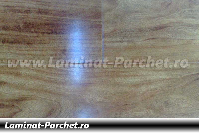 Parchet laminat 12mm Pin B005