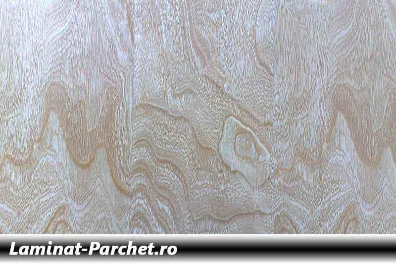 Parchet laminat 12mm Scoarta de Copac Artar 650